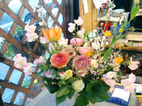 20100124_flower