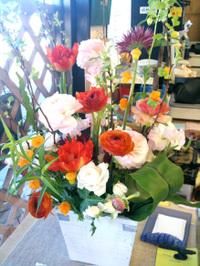 20100131_flower