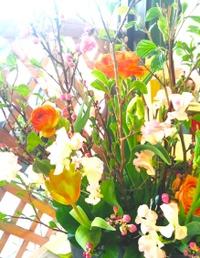 20100228_flower
